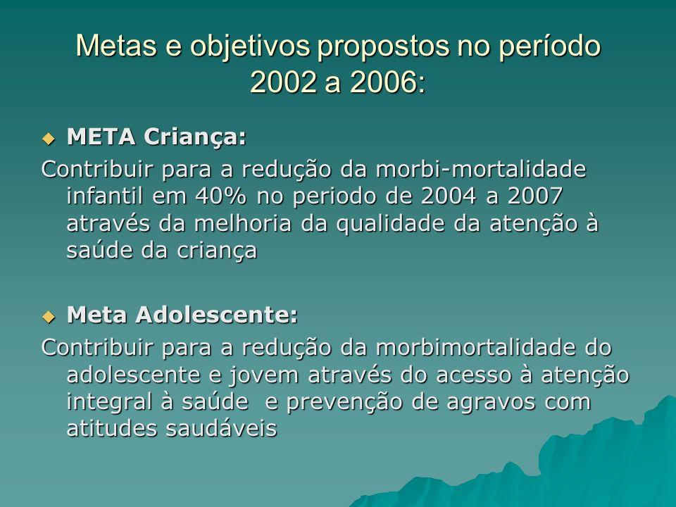 Metas e objetivos propostos no período 2002 a 2006: