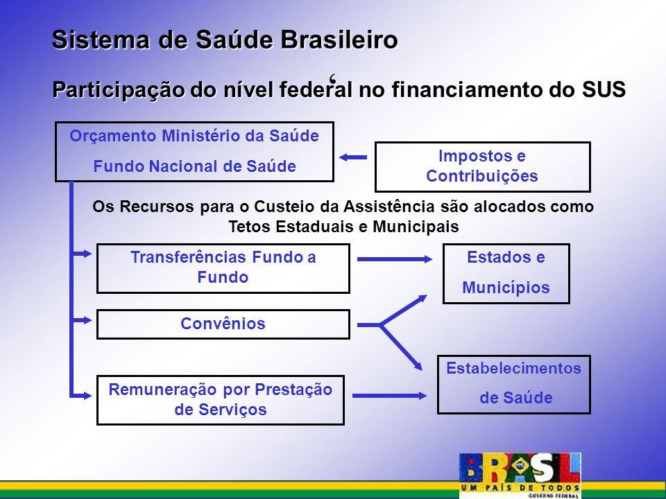 ' Sistema de Saúde Brasileiro