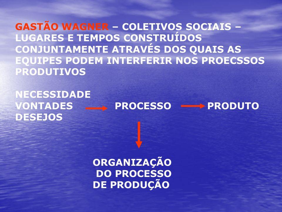 GASTÃO WAGNER – COLETIVOS SOCIAIS – LUGARES E TEMPOS CONSTRUÍDOS CONJUNTAMENTE ATRAVÉS DOS QUAIS AS EQUIPES PODEM INTERFERIR NOS PROECSSOS
