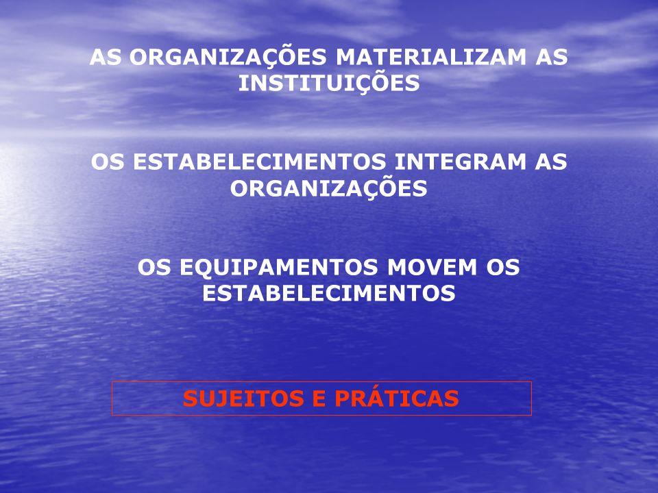 AS ORGANIZAÇÕES MATERIALIZAM AS INSTITUIÇÕES