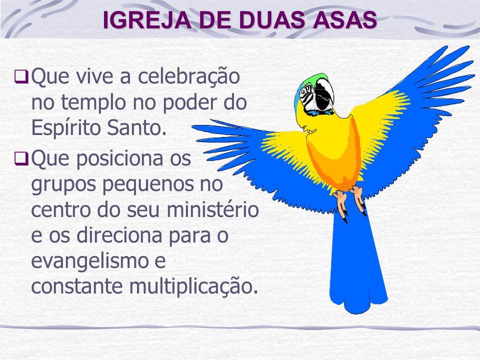 IGREJA DE DUAS ASAS Que vive a celebração no templo no poder do Espírito Santo.