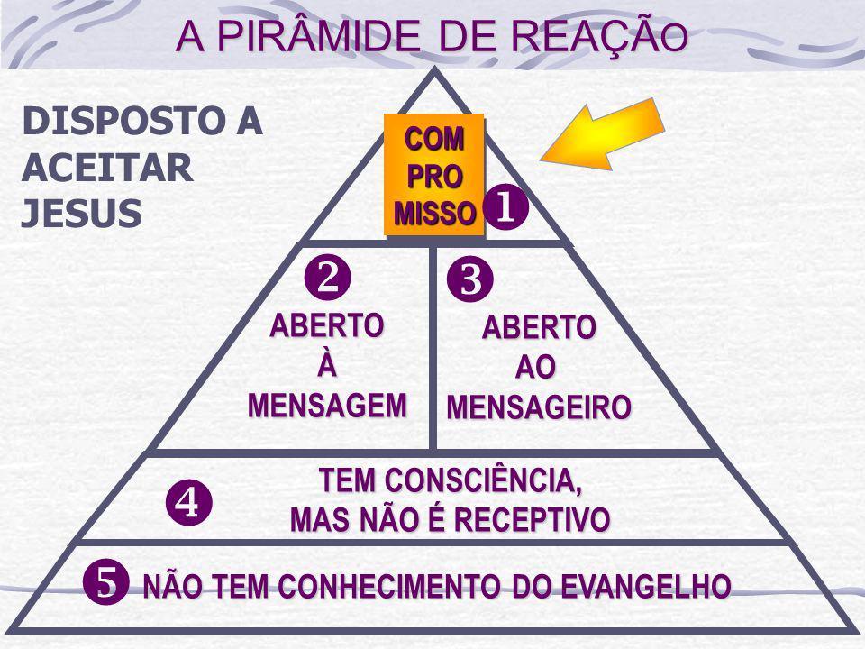 u v w x y A PIRÂMIDE DE REAÇÃO DISPOSTO A ACEITAR JESUS ABERTO ABERTO