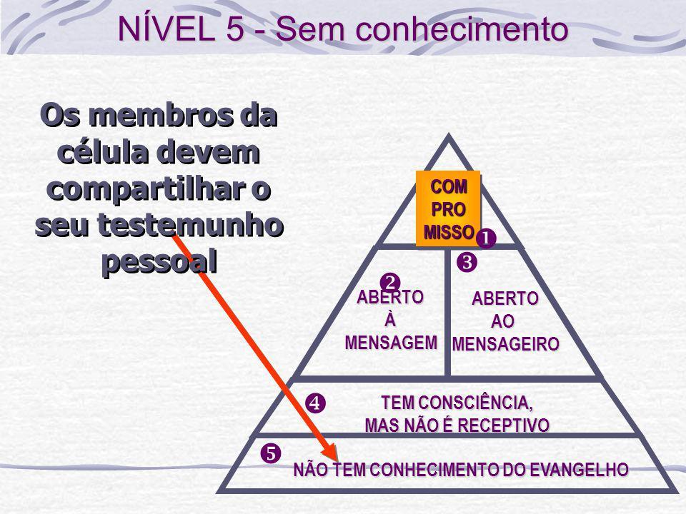 NÍVEL 5 - Sem conhecimento