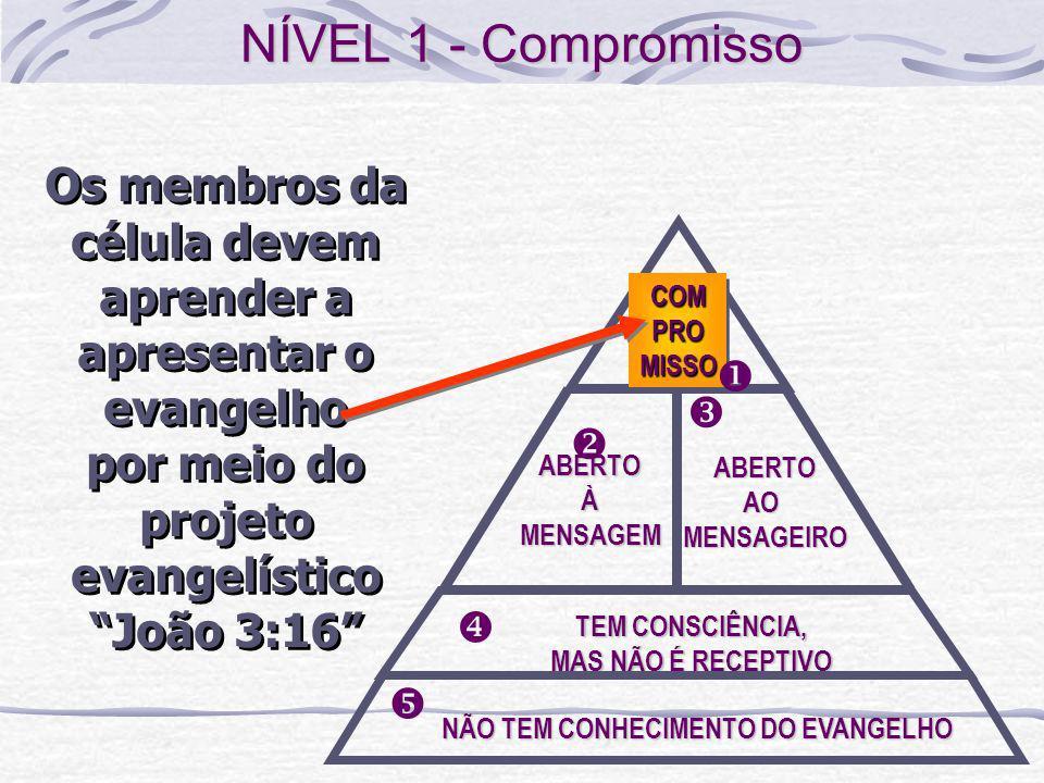 NÍVEL 1 - Compromisso Os membros da célula devem aprender a apresentar o evangelho. por meio do projeto evangelístico João 3:16