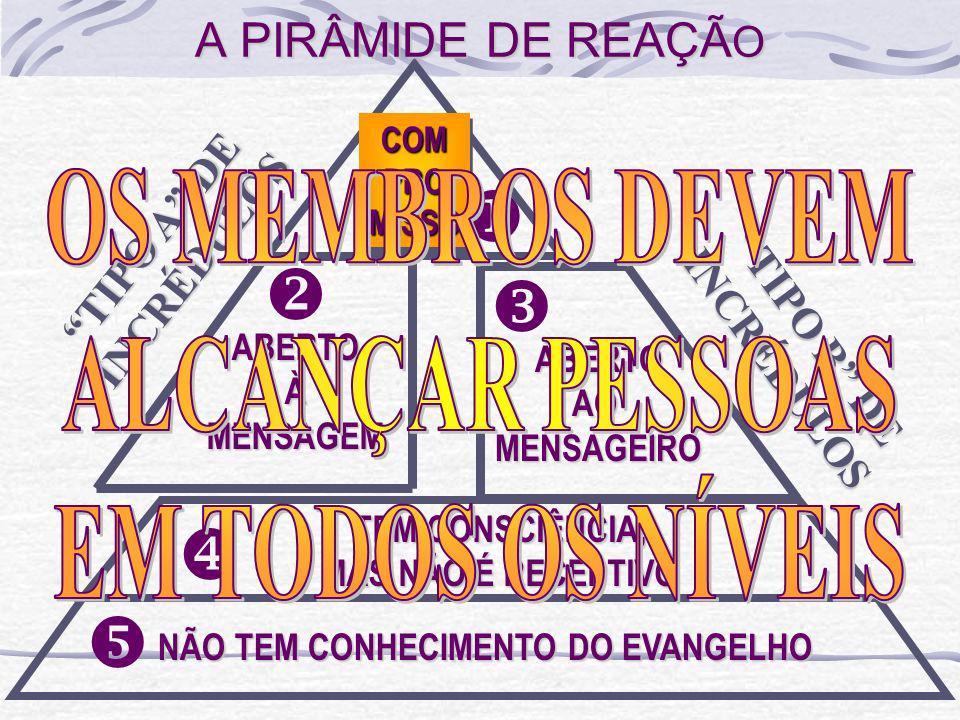 u v w x y A PIRÂMIDE DE REAÇÃO OS MEMBROS DEVEM ALCANÇAR PESSOAS