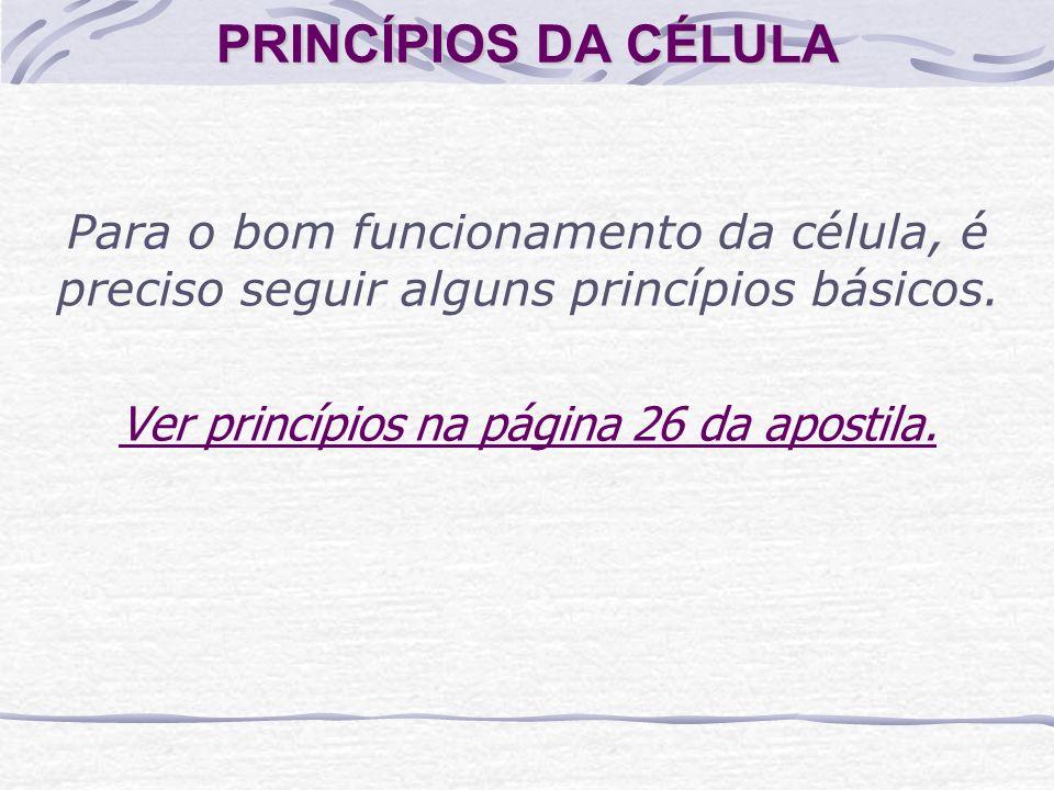 Ver princípios na página 26 da apostila.