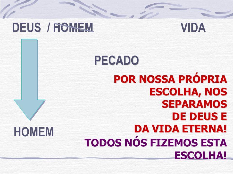 DEUS / HOMEM VIDA PECADO HOMEM POR NOSSA PRÓPRIA ESCOLHA, NOS