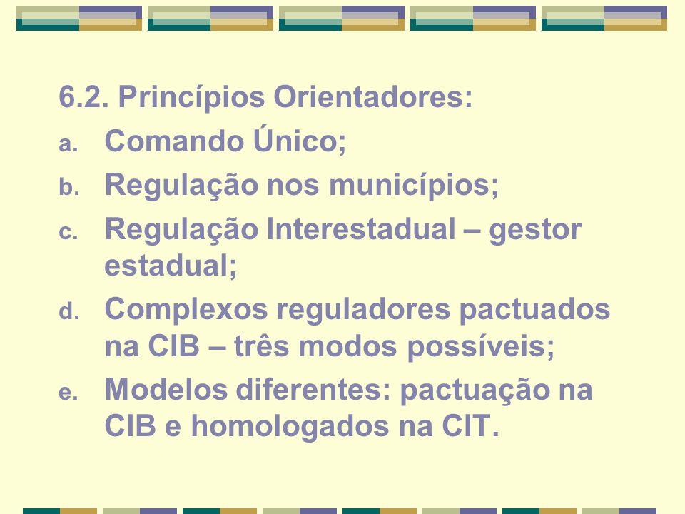 6.2. Princípios Orientadores: