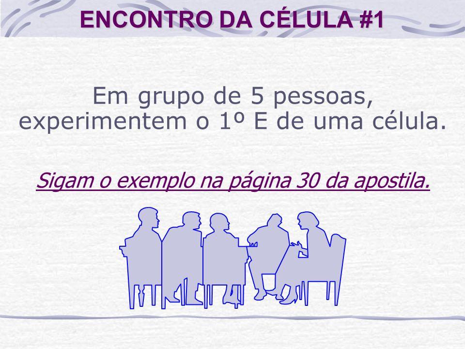 Em grupo de 5 pessoas, experimentem o 1º E de uma célula.