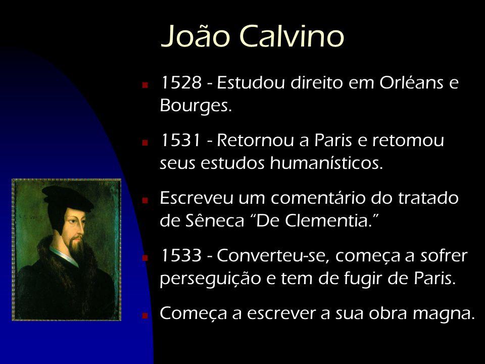 João Calvino 1528 - Estudou direito em Orléans e Bourges.