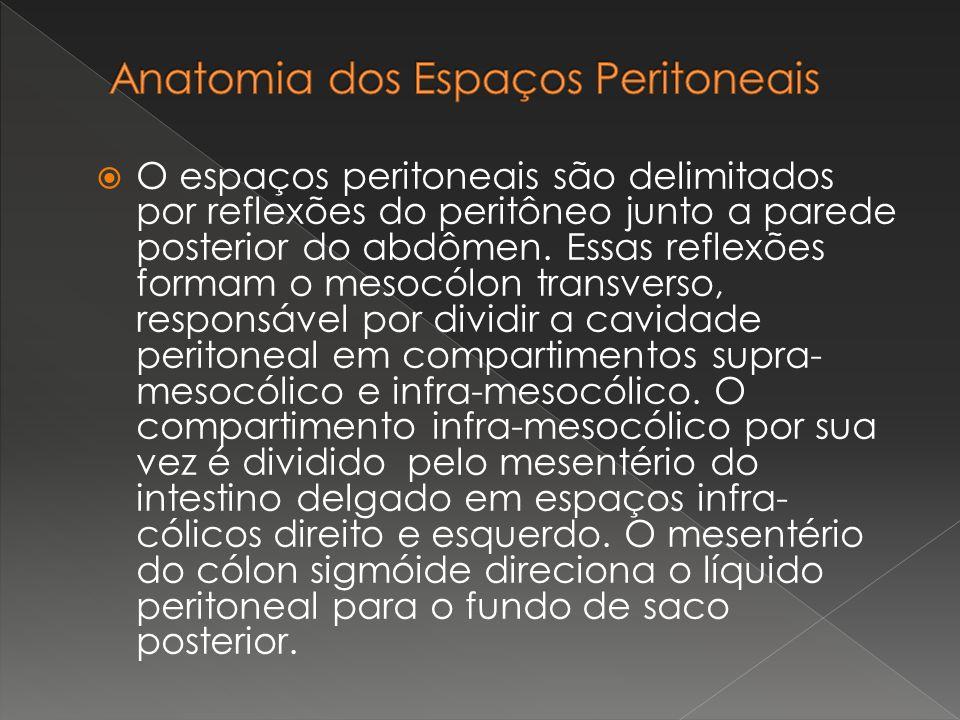 Anatomia dos Espaços Peritoneais