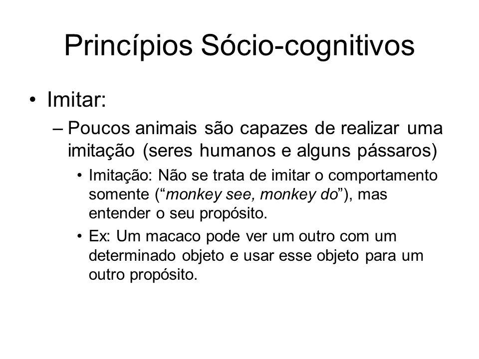 Princípios Sócio-cognitivos