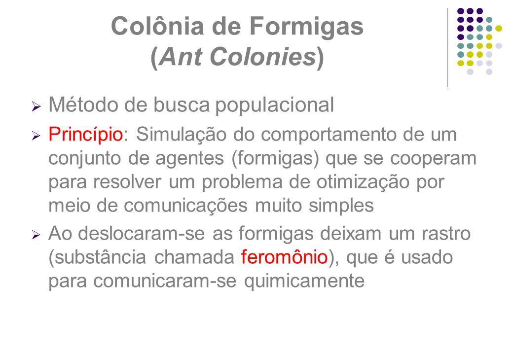 Colônia de Formigas (Ant Colonies)