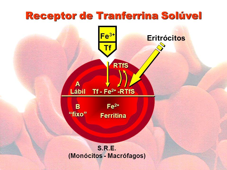 Receptor de Tranferrina Solúvel