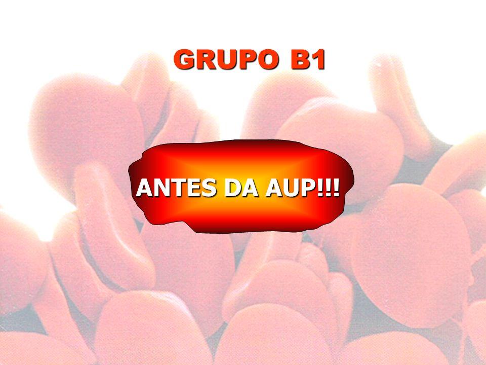 GRUPO B1 ANTES DA AUP!!!