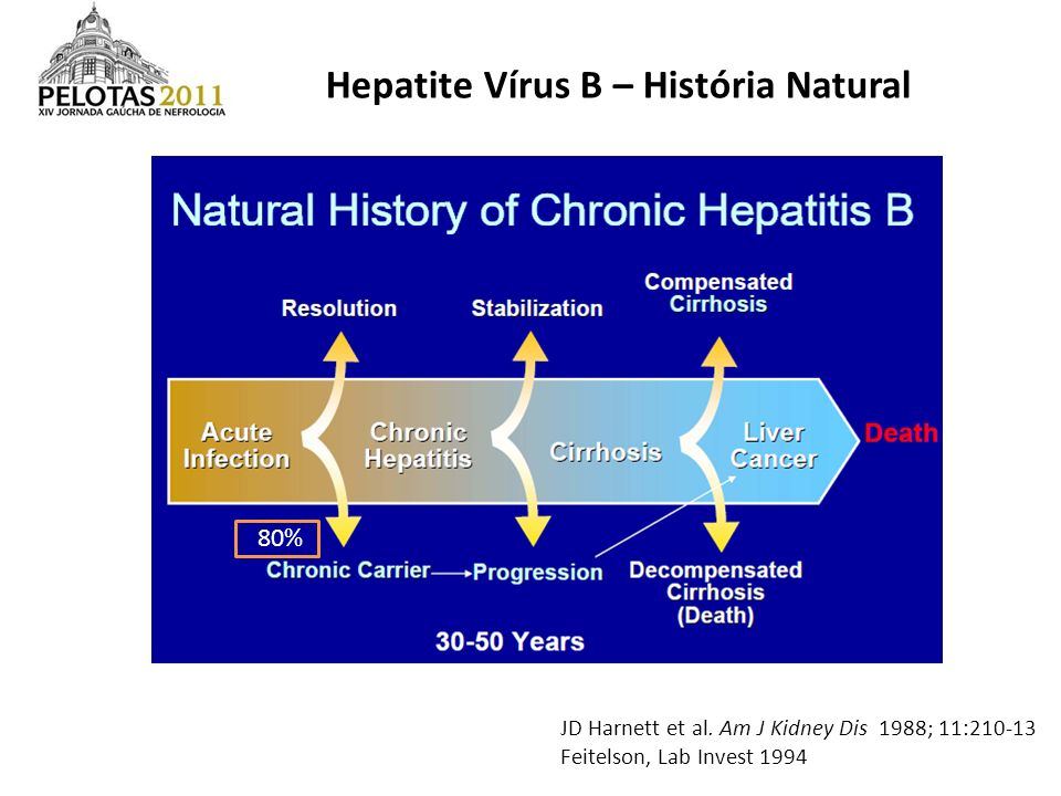Hepatite Vírus B – História Natural