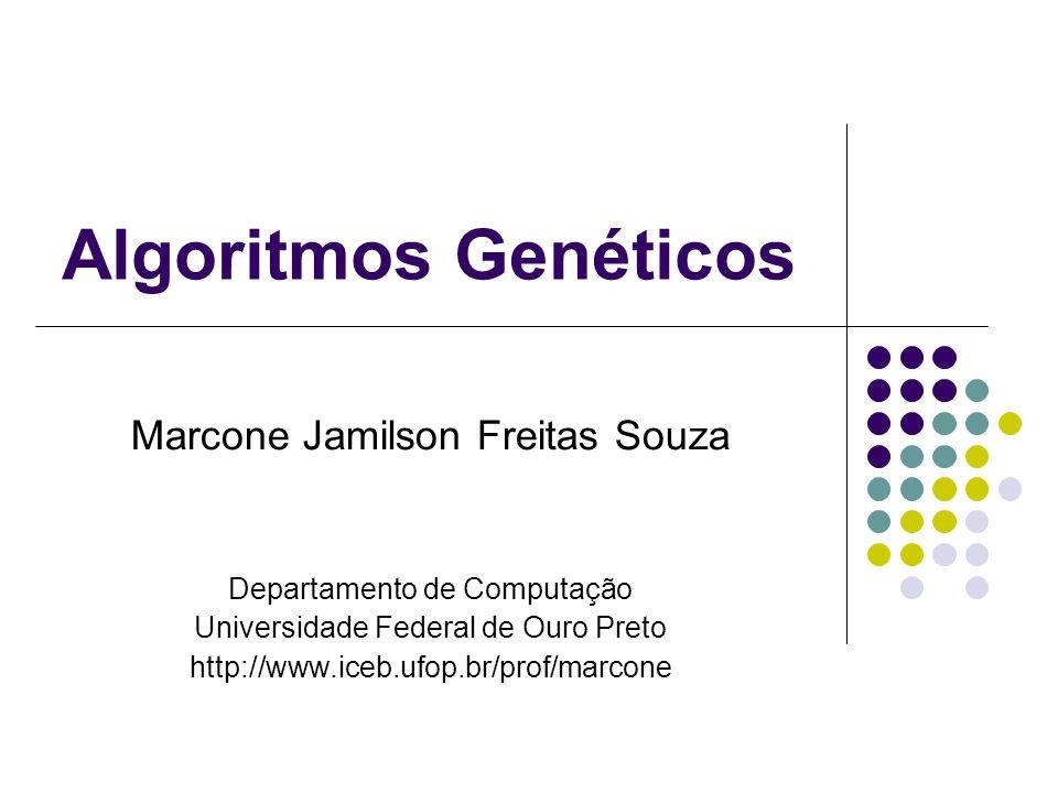 Algoritmos Genéticos Marcone Jamilson Freitas Souza