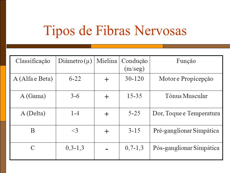 Tipos de Fibras Nervosas