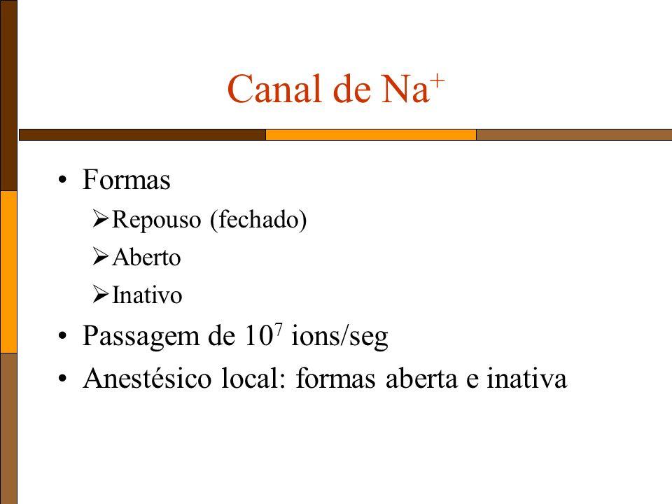 Canal de Na+ Formas Passagem de 107 ions/seg