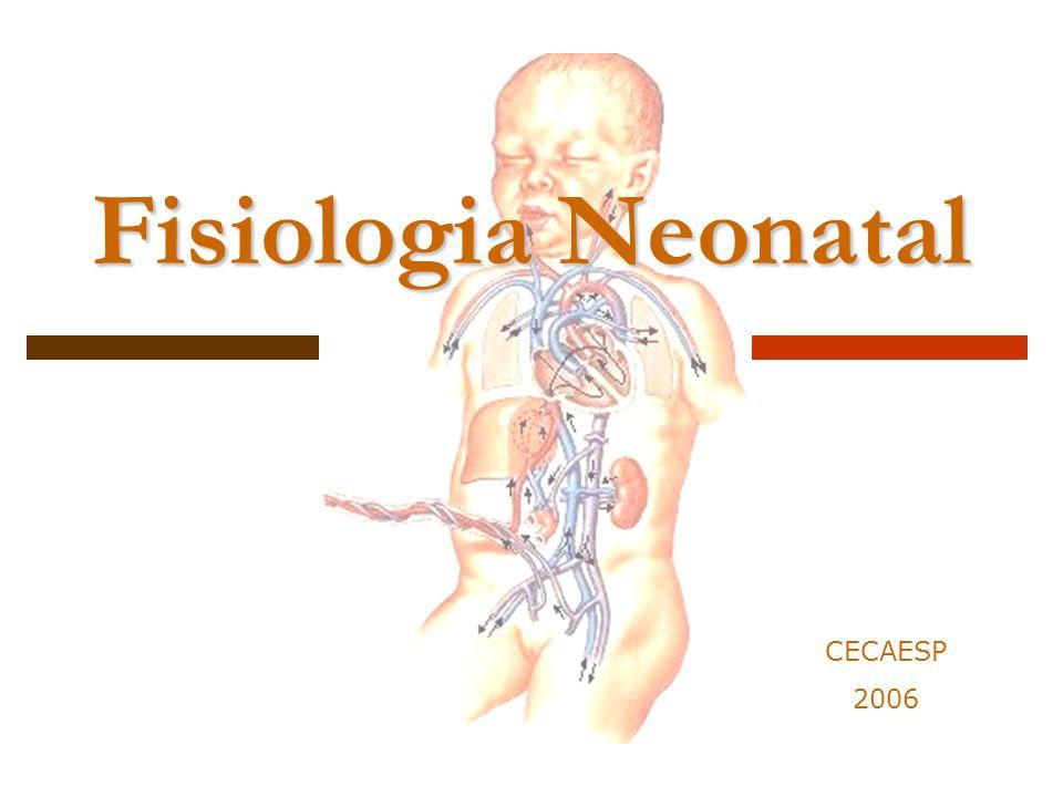 Fisiologia Neonatal CECAESP 2006