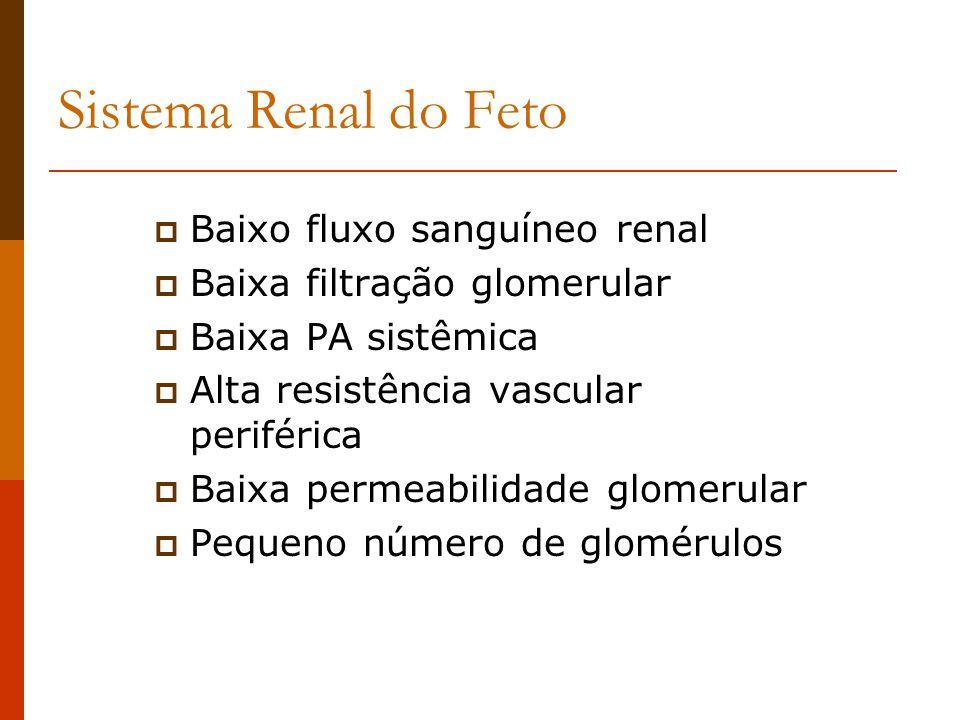 Sistema Renal do Feto Baixo fluxo sanguíneo renal