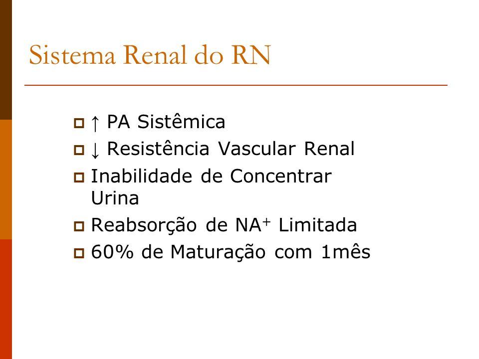 Sistema Renal do RN ↑ PA Sistêmica ↓ Resistência Vascular Renal