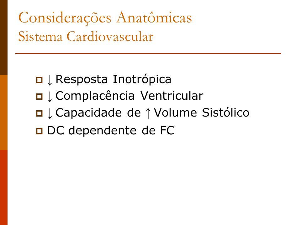 Considerações Anatômicas Sistema Cardiovascular