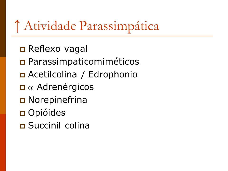 ↑ Atividade Parassimpática