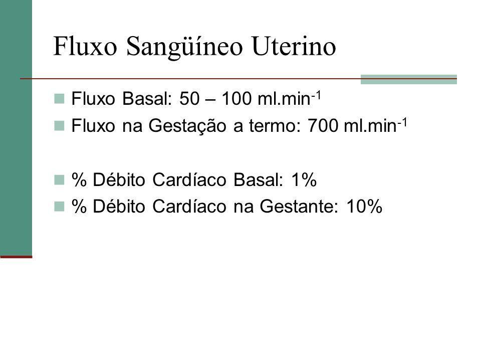 Fluxo Sangüíneo Uterino