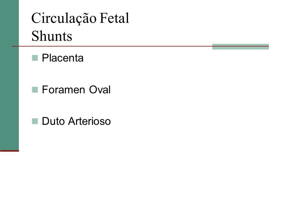 Circulação Fetal Shunts
