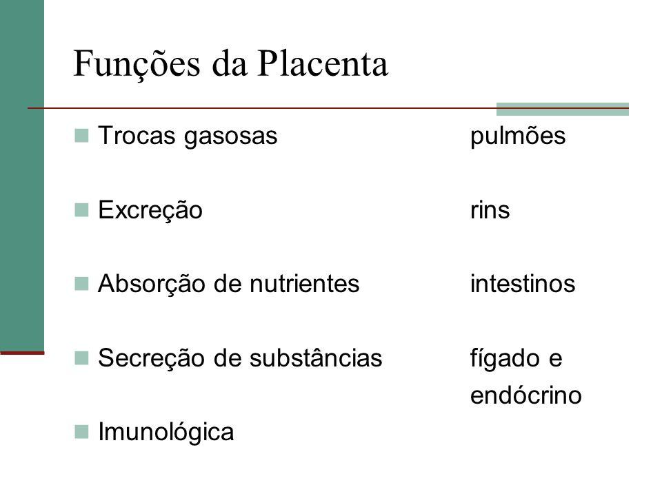 Funções da Placenta Trocas gasosas pulmões Excreção rins