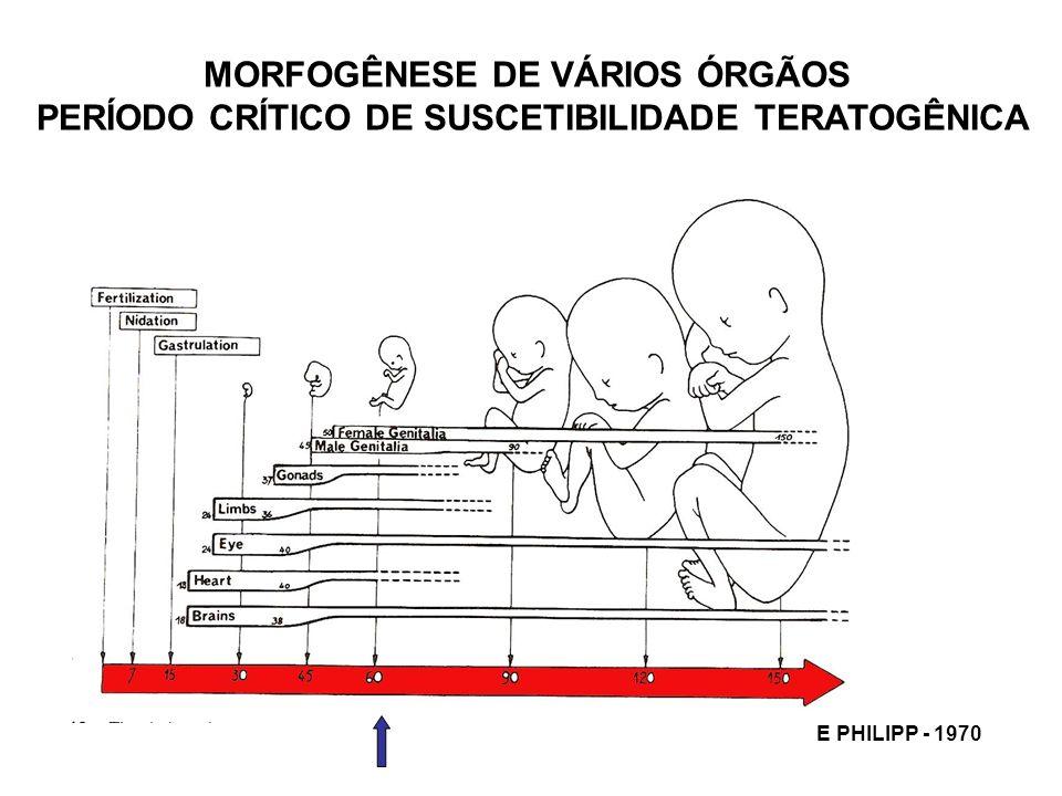 MORFOGÊNESE DE VÁRIOS ÓRGÃOS
