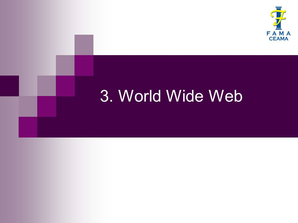 3. World Wide Web