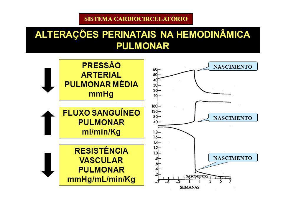 ALTERAÇÕES PERINATAIS NA HEMODINÂMICA PULMONAR