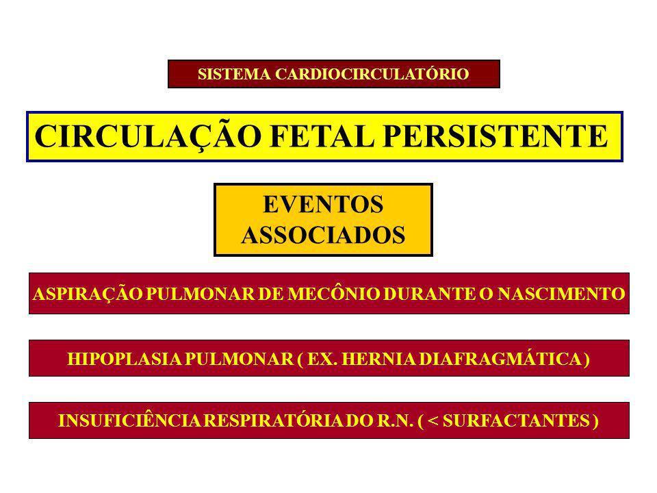 CIRCULAÇÃO FETAL PERSISTENTE