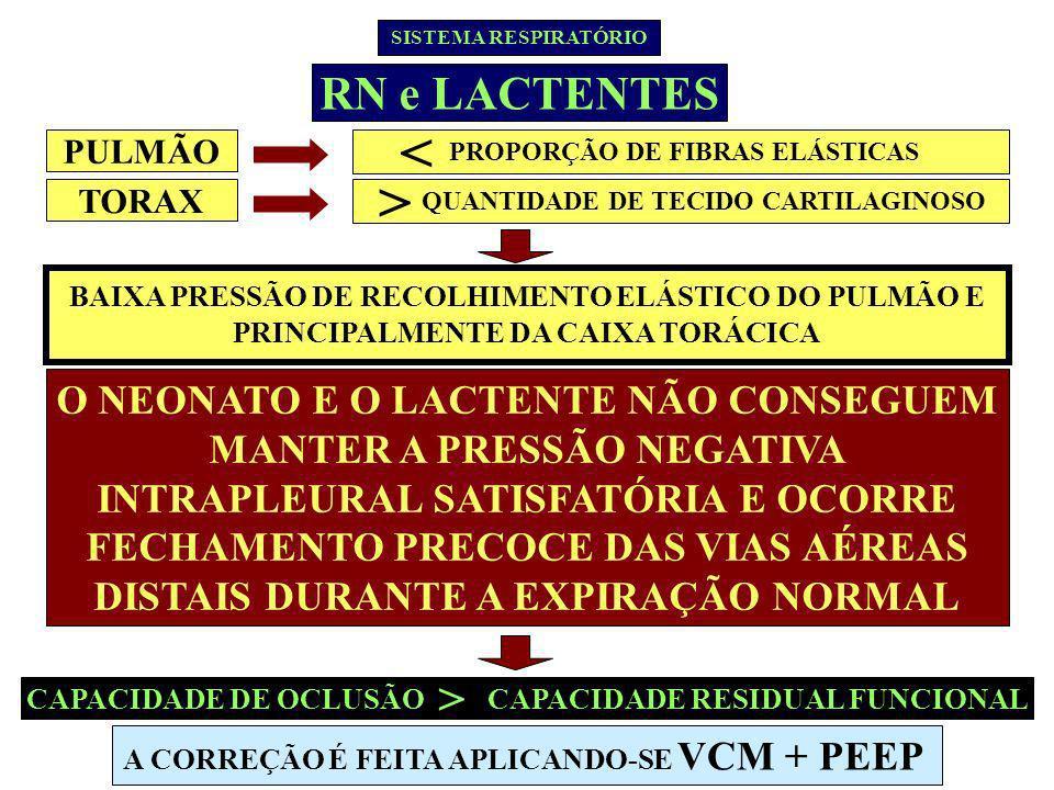< > RN e LACTENTES >