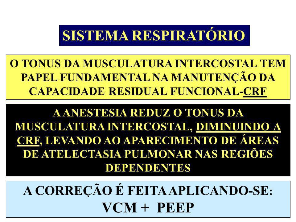 A CORREÇÃO É FEITA APLICANDO-SE: VCM + PEEP