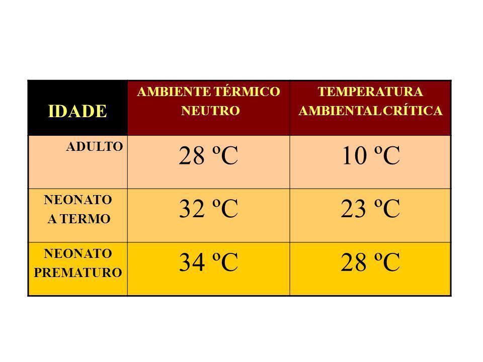 28 ºC 10 ºC 32 ºC 23 ºC 34 ºC IDADE AMBIENTE TÉRMICO NEUTRO