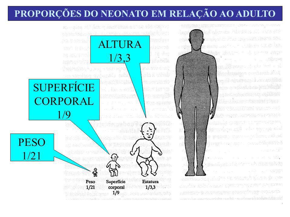 PROPORÇÕES DO NEONATO EM RELAÇÃO AO ADULTO