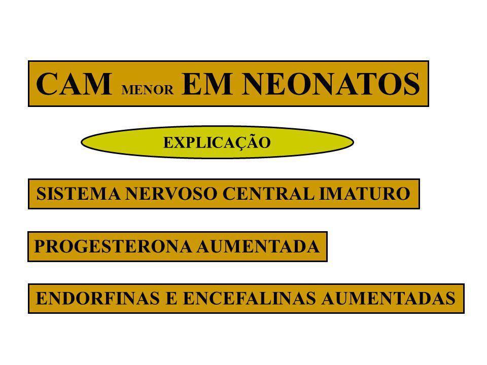 CAM MENOR EM NEONATOS SISTEMA NERVOSO CENTRAL IMATURO