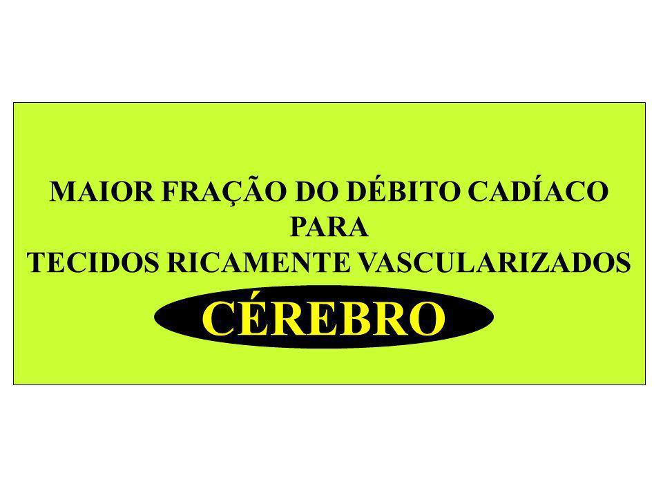 MAIOR FRAÇÃO DO DÉBITO CADÍACO TECIDOS RICAMENTE VASCULARIZADOS