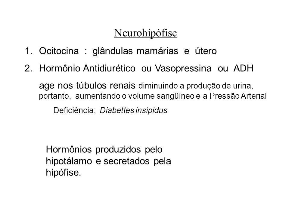 Neurohipófise Ocitocina : glândulas mamárias e útero