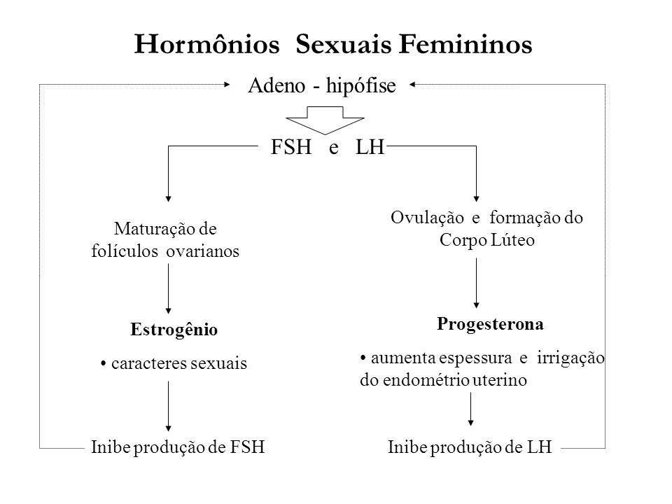 Hormônios Sexuais Femininos