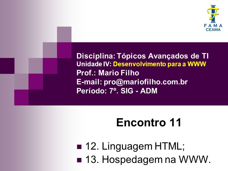 Encontro 11 12. Linguagem HTML; 13. Hospedagem na WWW.
