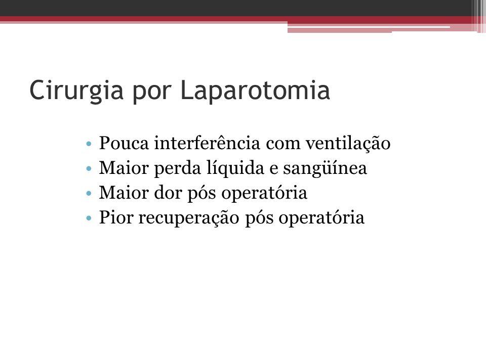Cirurgia por Laparotomia