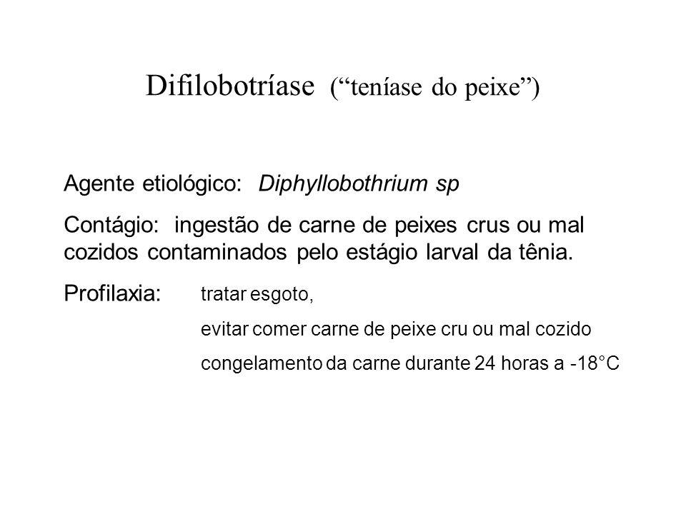 Difilobotríase ( teníase do peixe )