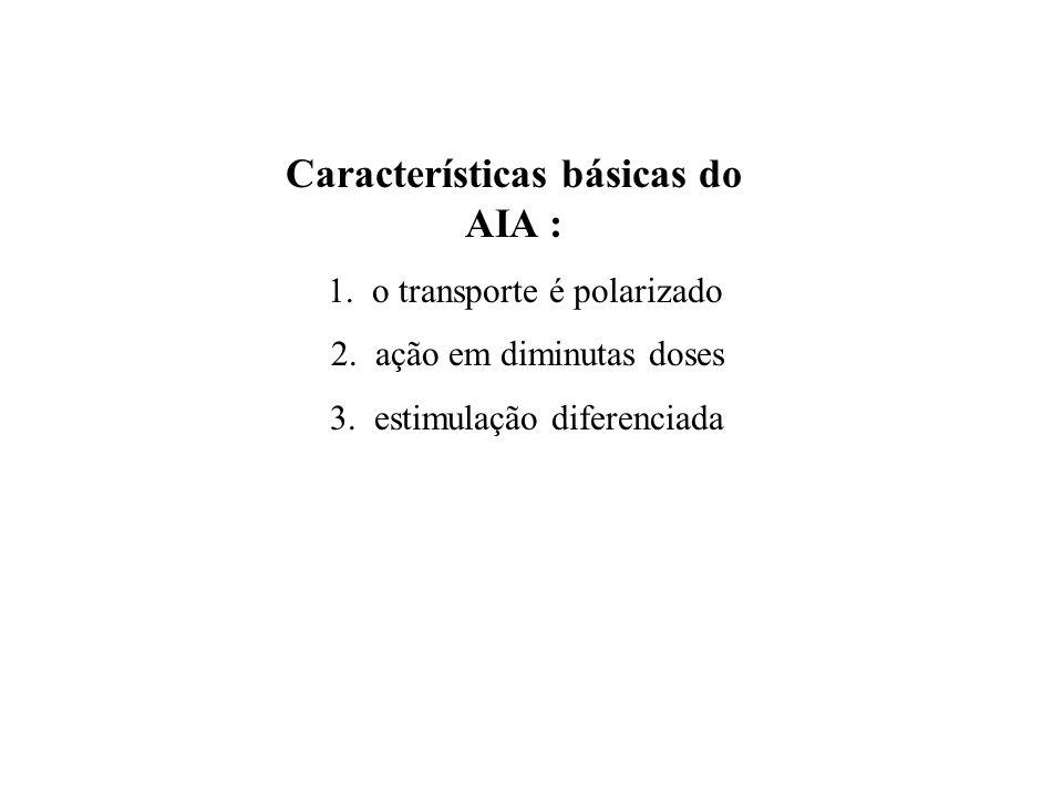 Características básicas do AIA :