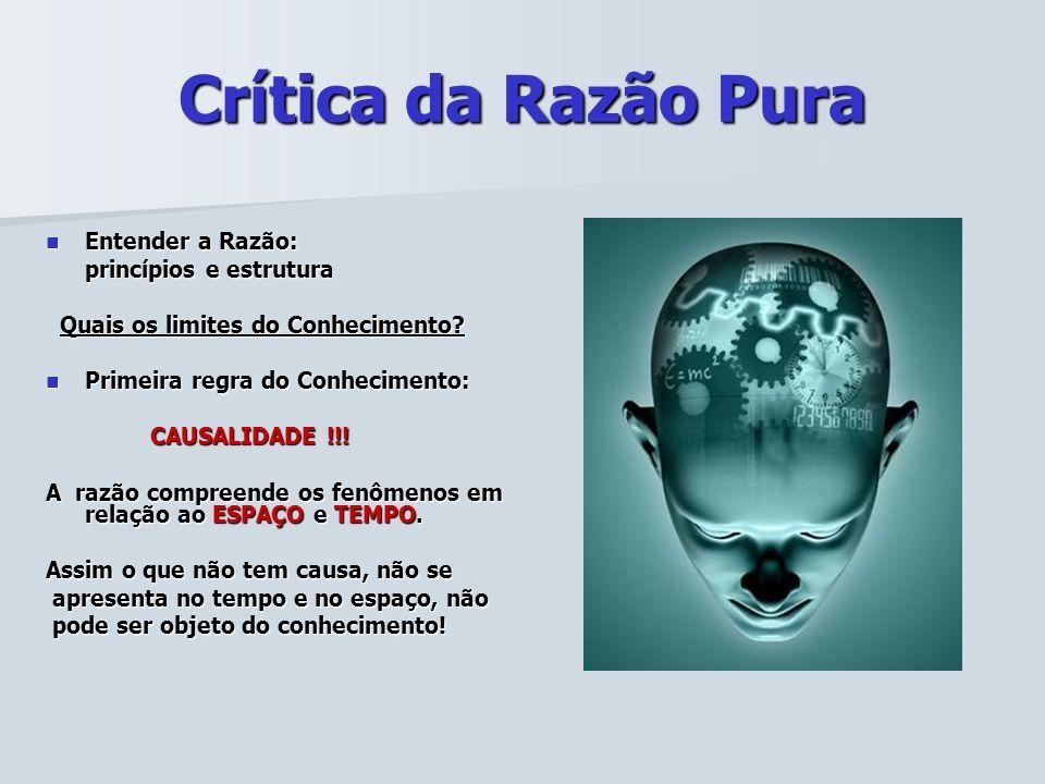 Crítica da Razão Pura Entender a Razão: princípios e estrutura