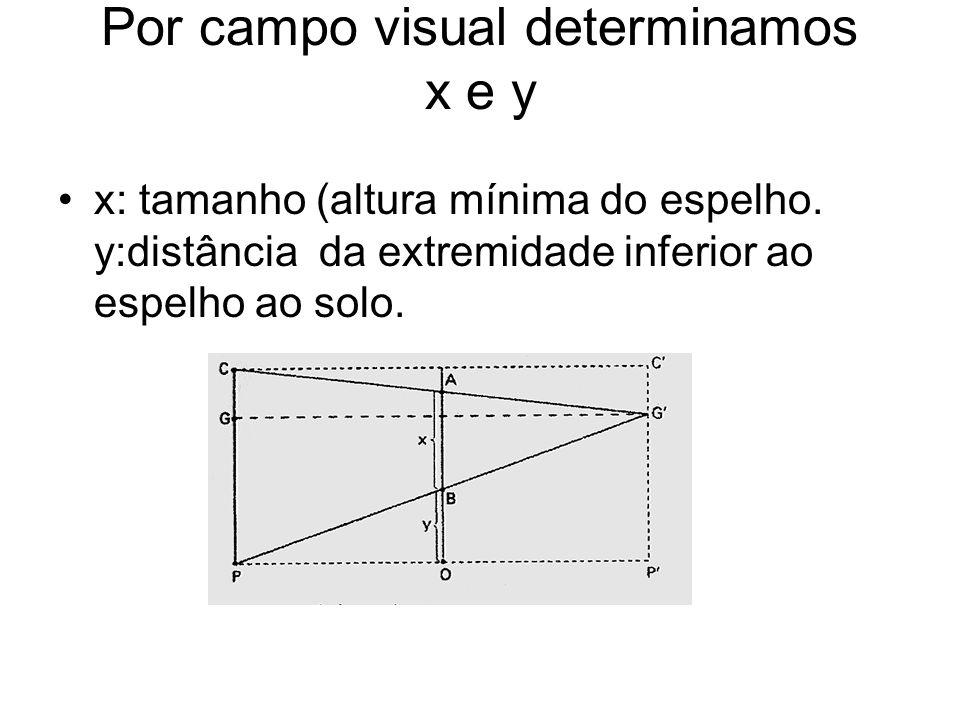 Por campo visual determinamos x e y