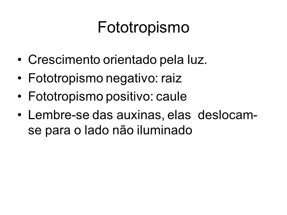 Fototropismo Crescimento orientado pela luz.